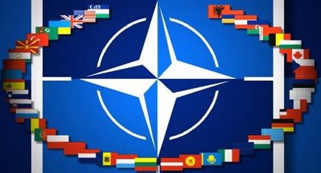 Negara Anggota Nato