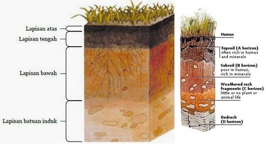 Lapisan - Lapisan Tanah