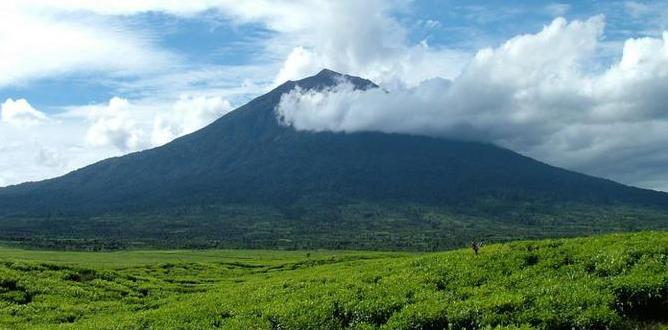 Nama gunung berapi di indonesia