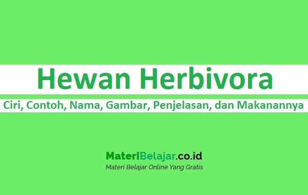 Hewan Herbivora