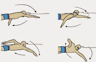Renang-Teknik-Gerakan-Tangan
