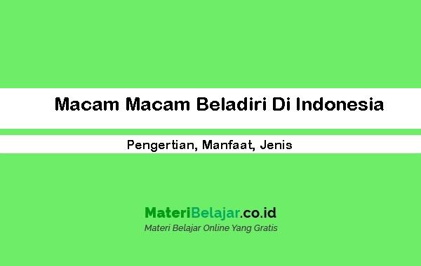 Macam-Macam-Beladiri-Di-Indonesia