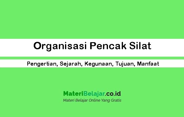 Organisasi Pencak Silat