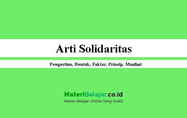 Arti Solidaritas