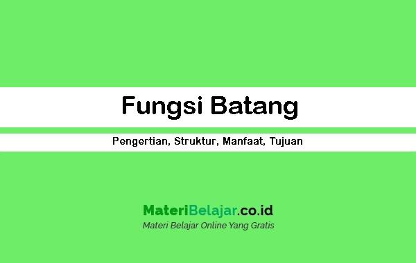 Fungsi Batang
