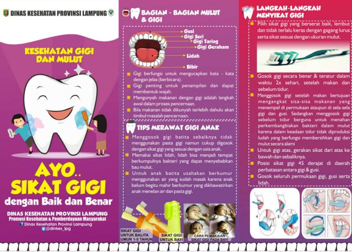 contoh leaflet kesehatan